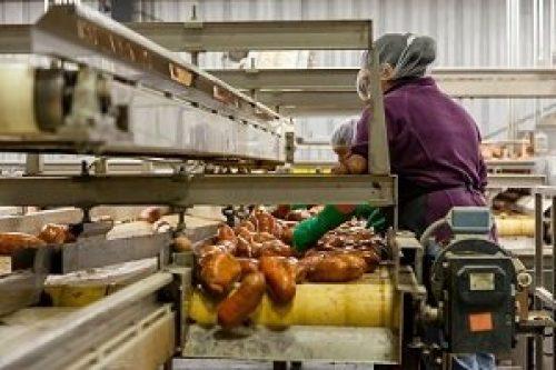 settore-alimentare-nastro-trasportatore